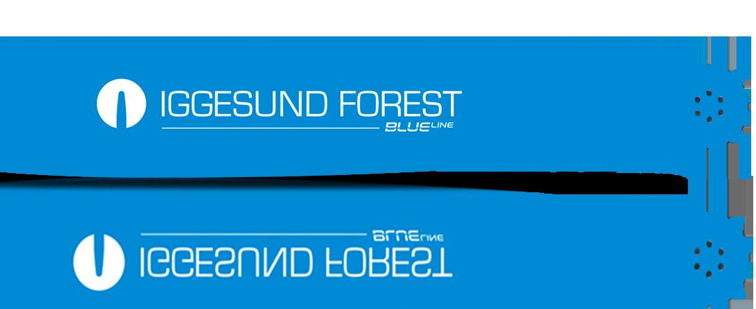 Tester pågår hos Iggesund Forestry